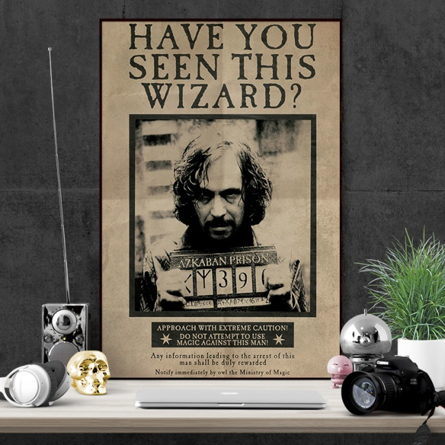 Plakat Harry Potter Sirius Black